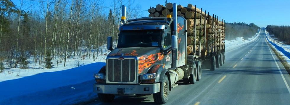 camión madera