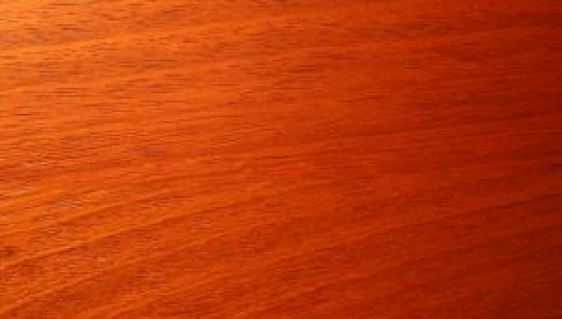 Especies de madera para fabricar muebles | Maderea