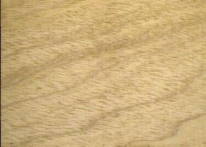 madera ceiba o fromager