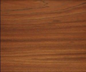 madera etimoe