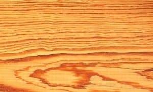 madera pino amarillo sur