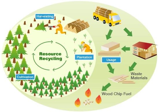 Madera reusable reciclable y revalorizable