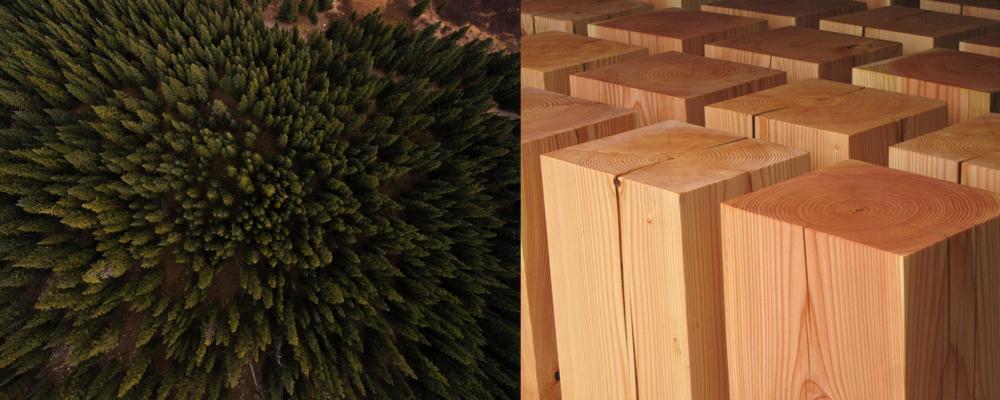 madera de abeto