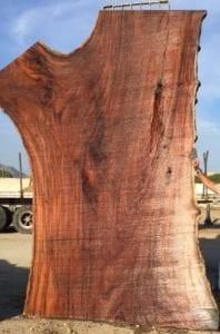 madera de parota (amber wood)