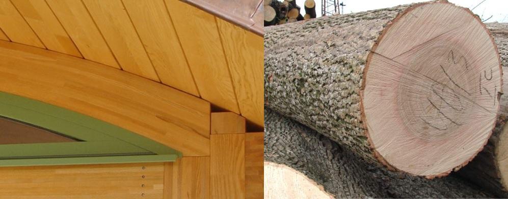 vigas de madera de fresno