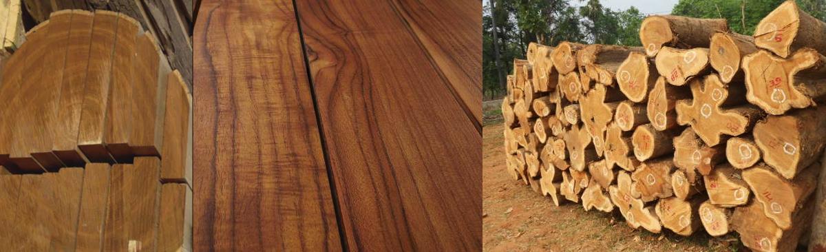 madera de teca precio