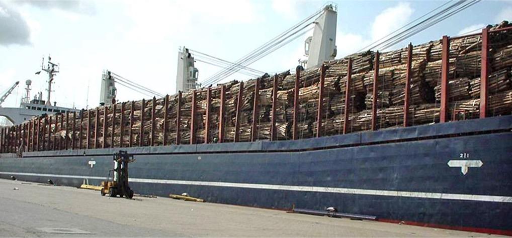 precios madera de importacion