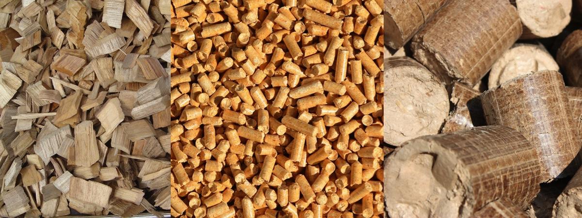 Biomasa astillas pellets briquetas