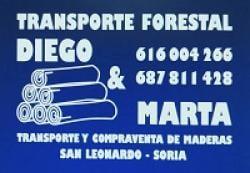 TRANSPORTES DIEGO Y MARTA SL