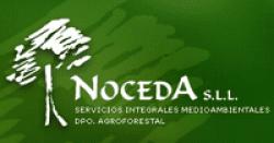 NOCEDA S L